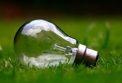 Como aplicar a sustentabilidade em compras?